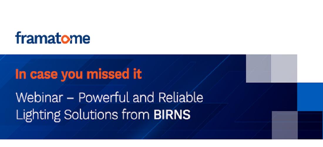 BIRNS Webinar